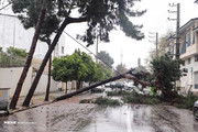 وقوع طوفان تندری در برخی مناطق کشور طی ۹ و ۱۰ خرداد