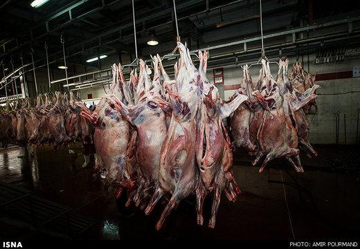 وزارت صنعت اعلام کرد: قیمت گوشت قرمز در بازار؛ ۵۰ تا ۱۲۰ هزار تومان