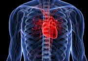گرفتگی عروق قلب را با این معجون طبیعی برطرف کنید