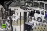 فیلم | سگها، صاحب خود را از دست سارق مسلح نجات دادند