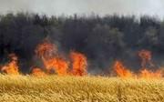 آتشسوزی گسترده در خوزستان/ درخواست بالگرد برای اطفای حریق