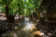 تصاویر | طبیعت خارقالعاده و هالیوودی «دره شیرز» در لرستان
