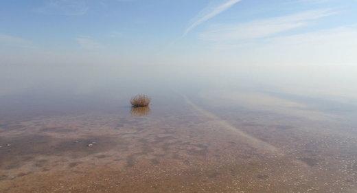 بودجه ۲۰۰ میلیاردی دولت برای دریاچه ارومیه کجا هزینه میشود؟