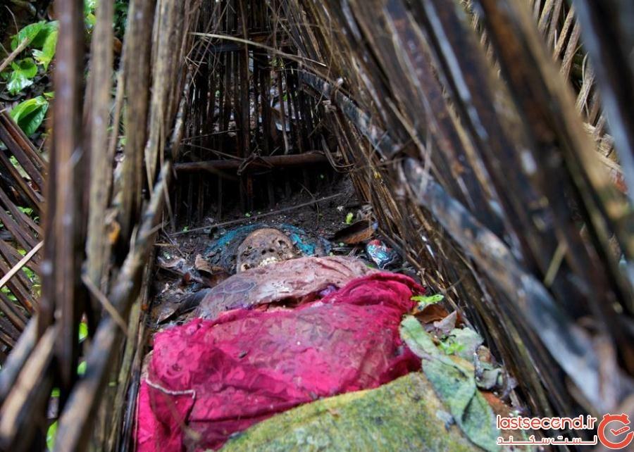 5204948 - گورستانی با قبرهای سرگشاده در بالی