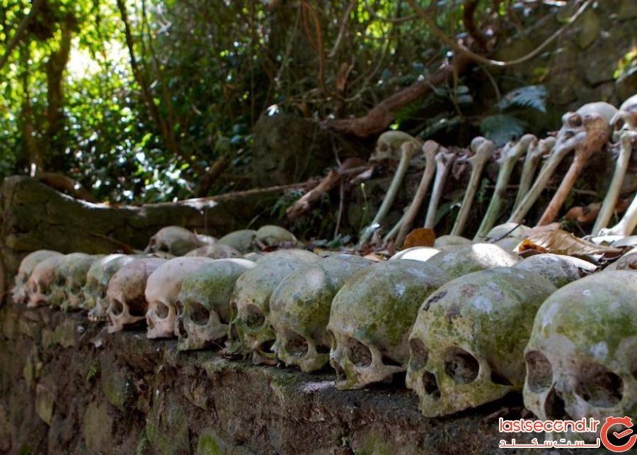 5204950 - گورستانی با قبرهای سرگشاده در بالی