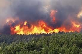 ۱۸ فقره آتشسوزی در منابع طبیعی خوزستان در ۲ روز