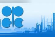 نفت اوپک گران شد