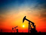 احتمال سقوط قیمت نفت به ۳۰ دلار با تحریم ایران