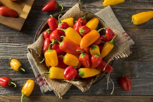 سبزیجات,آب و هوا,تغذیه