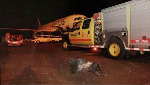 الخيارت القادمة للحوثيين تعطيل مطارات الرياض وابو ظبي