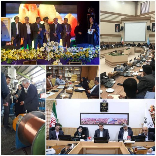 سفر رئیس سازمان ملی بهرهوری ایران به استان یزد