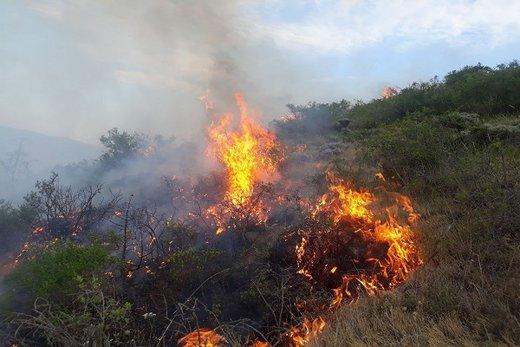 آتش ۲ هکتار از مراتع کلیبر را خاکستر کرد