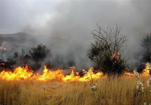۶ هکتار از اراضی ملی گلوگاه آتش گرفت