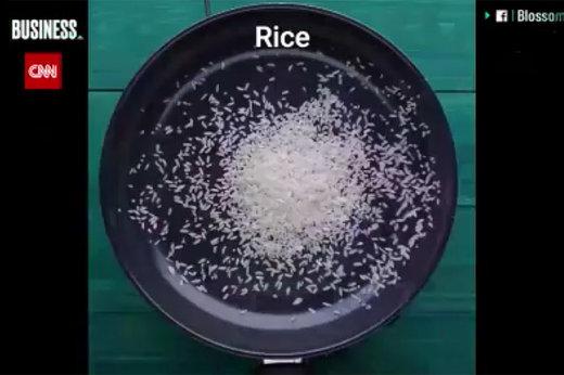 ویدئوهای جعلی که در فیسبوک دیده شدند؛ از برنج پلاستیکی تا قهوه بیات!