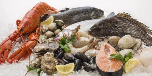 گشتی در بازار ماهی تهران+جدول نرخها