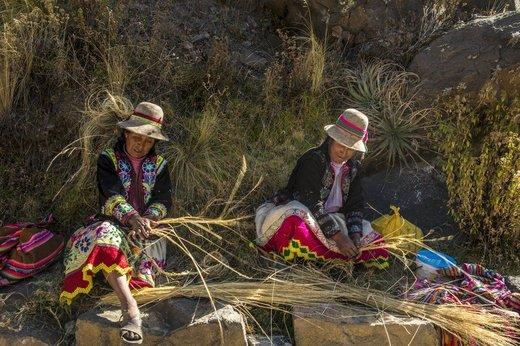 ساخت پل با علف در پرو