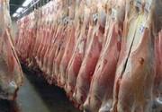 واسطهها نمیگذارند گوشت ارزان شود