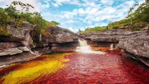 رودخانه کانو کریستال کلمبیا