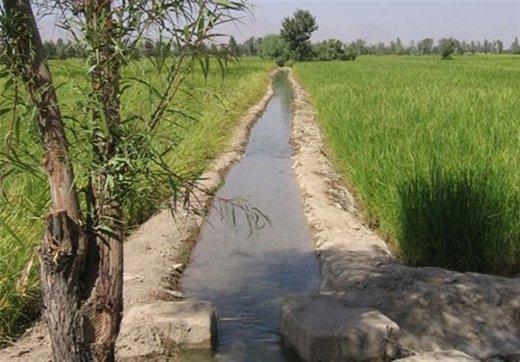 دعوای وزارت جهادکشاورزی با وزارت نیرو بر سر «آب»