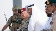 امارات دست به دامان ایران شد