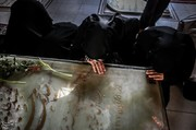 تصاویر | بر مزار شهدای هفتمتیر