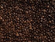 سلاطین تولید قهوه در جهان کدام کشورها هستند؟
