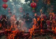 عکس | تشریفات سال نوی چینی در عکس روز نشنال جئوگرافیک