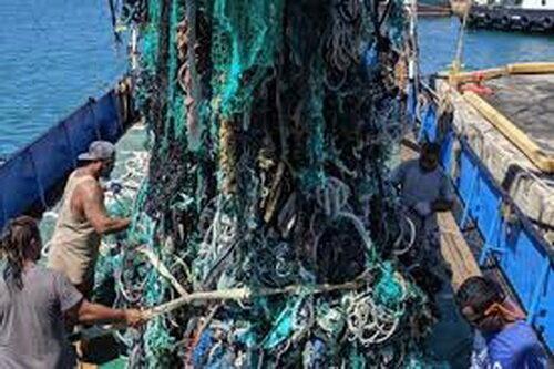 جمعآوری ۴۰ تُن زباله از اقیانوس آرام