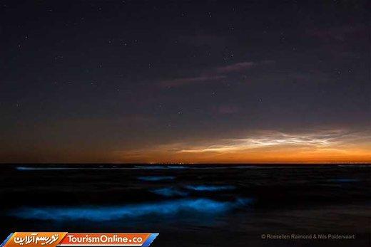 پدیده شب تاب دریایی در سواحل هلند