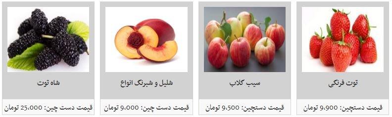 میوه های تابستانی کیلویی چند؟