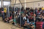 اظهارات عجیب و توهینآمیز ترامپ به مهاجران