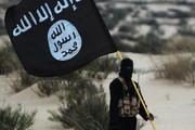 فیلم   «داعش» به آذربایجان رسید!