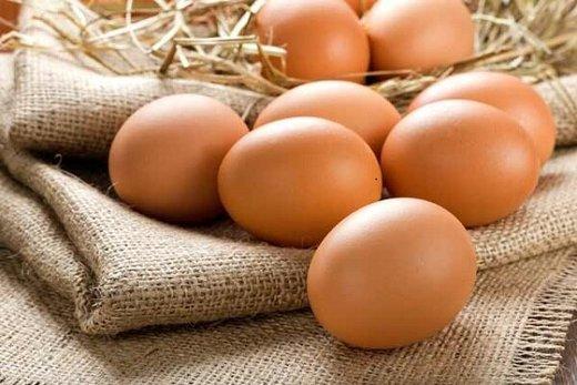 تخممرغ قهوهای تقلبی به بازار آمد
