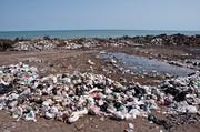 تصاویر | فاجعه زیست محیطی در ساحل محمودآباد