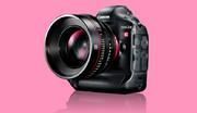 برای خرید دوربین عکاسی دیجیتال چقدر باید هزینه کنیم؟/ جدول