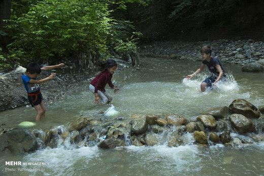 تفریح خانوادگی در خنکای تابستان گلستان