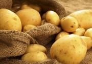 مصرف این ماده غذایی همراه با سیب زمینی ممنوع!