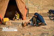 تصاویر | آخرین کوچهای عشایر