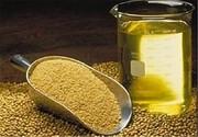 نامه وزیر صنعت به همتی: فورا ارز صنایع روغن نباتی را بدهید