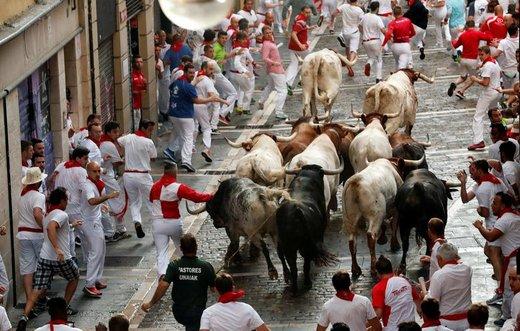 فستیوال سن فرمین در اسپانیا