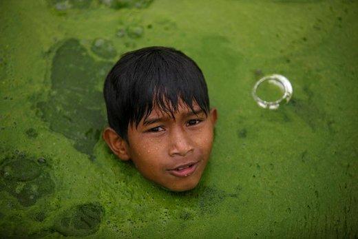 شنای پسربچه در یک رودخانه مملو از جلبک در Bhaktapur نپال