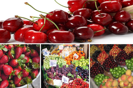 کاهش نرخ میوههای تابستانه/ پیشبینی ریزش مجدد قیمتها