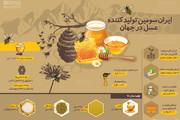 اینفوگرافیک   آماری جالب از تولید عسل در ایران