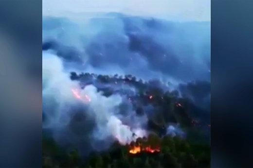 فیلم | آتشسوزی گسترده در جنگلهای «فتحیه» ترکیه