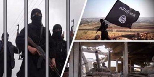 «مغز متفکر اقتصادی» داعش کشته شد