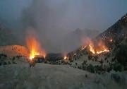 جنگلهای ایلام در آتش مهارنشدنی/ بالگرد لازم است که نیست
