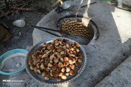 کارآفرینی خانواده روستایی با «عروس جنگل»