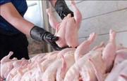 سازمان حمایت: مرغ بالاتر از قیمت ۱۲۹۰۰ گرانفروشی است