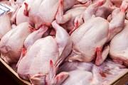 قیمت مرغ کاهش یافت