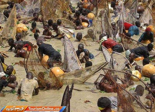 فستیوال ماهیگیری آرگانگو در نیجریه